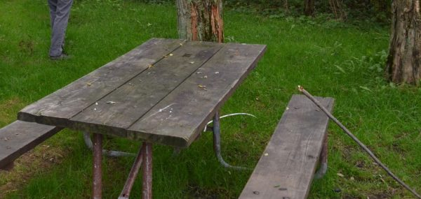 You'd think that with 26,000 photos in my library, I have a few good pictures of tables.